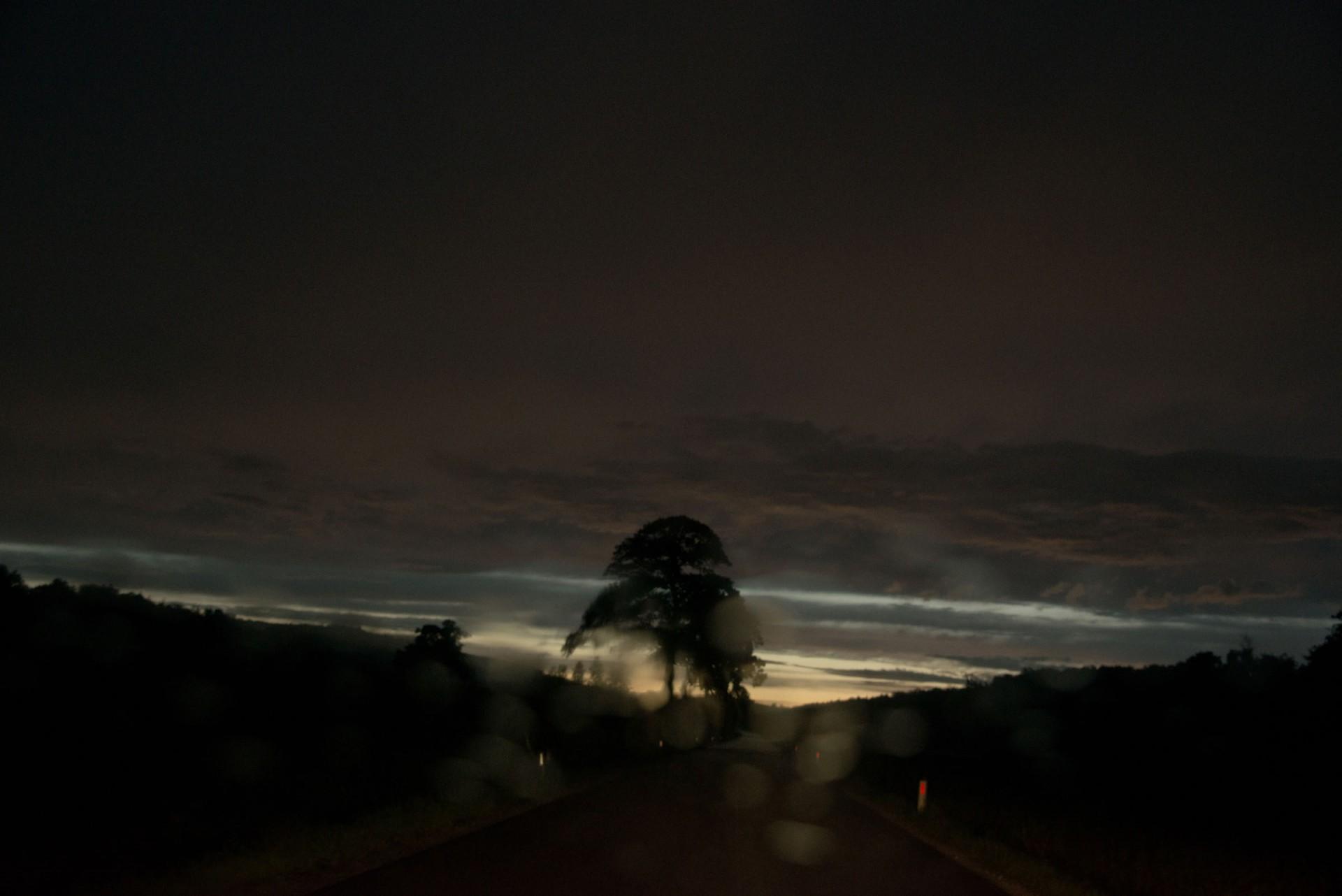 STEFAN REICHMANN Landscapes